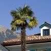 Ottmanngut | Südtirol erzählt
